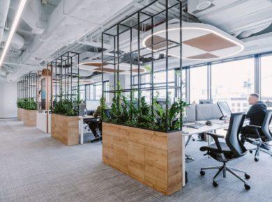 wspólna przestrzeń biurowa